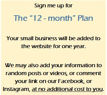 The 12-month Plan